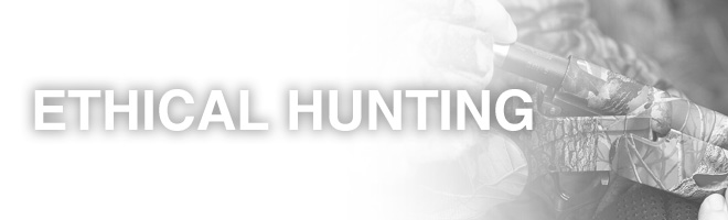 ethical hunting practices