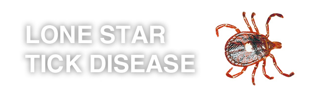 lone-star-tick-disease-guns-for-sale